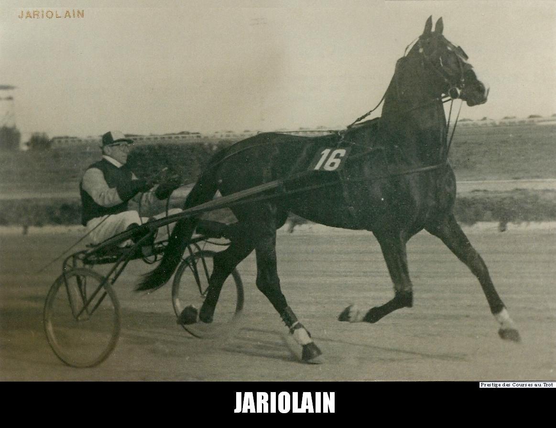 Jariolain gagna le Grand Prix d'Europe de Milan devant Crevalcore, avant d'être vendu en Italie. Il succéda à Gélinotte comme champion d'Europe en enlevant le Grand Circuit International 1958 et fut le premier à inscrire son nom au palmarès du Grand Critérium de Vitesse de la Côte d'Azur à Cagnes-sur-Mer la même année. Il se classa deuxième de Jamin dans le Prix d'Amérique 1958 et le Critérium des 5 ans, mais gagna le Prix de Paris 1958, devant Infante II, Smaragd et Gélinotte.