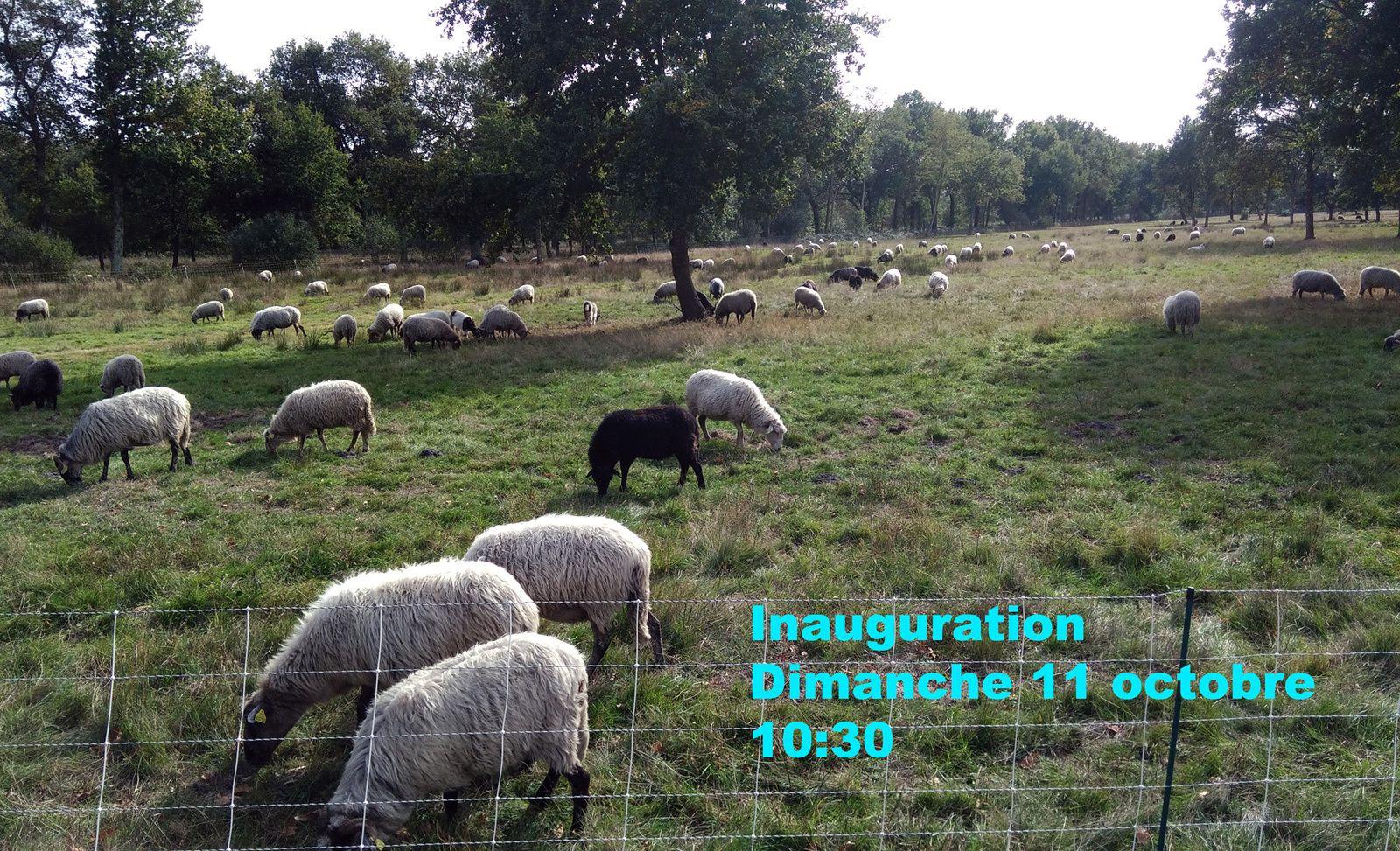 Inauguration Dimanche 11 octobre - 10:30