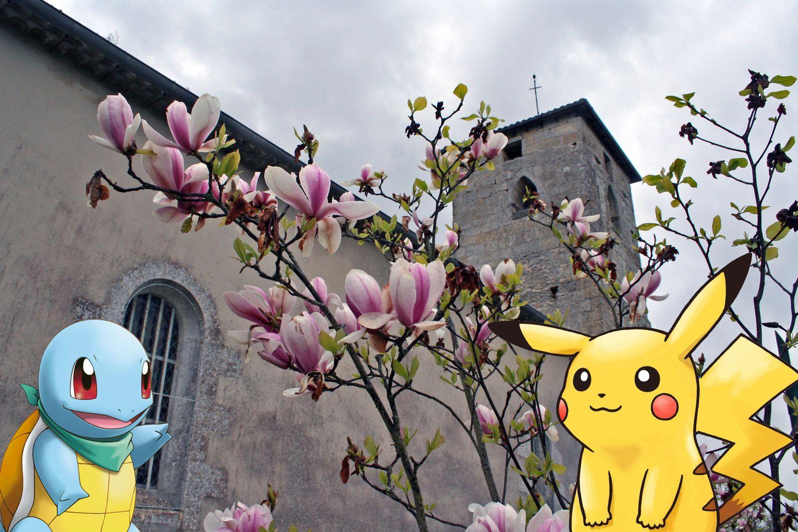 St Aubin sera-t-il touché par la fièvre Pokémon GO ?
