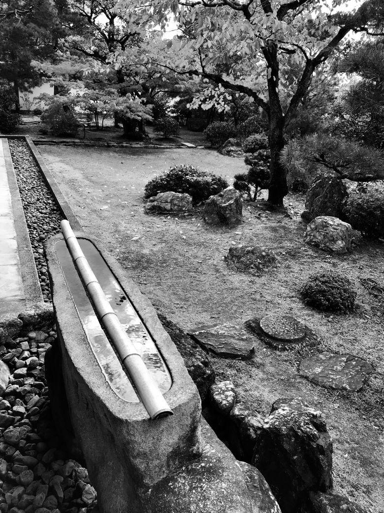 Kyoto de jardin en jardin : veines, ondes, noeuds et vagues