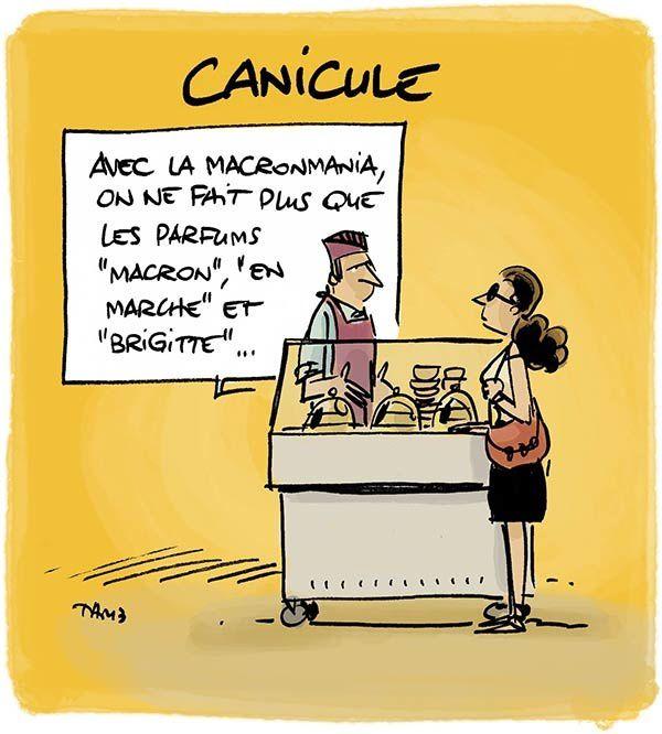 Du Macron matin, midi et soir.