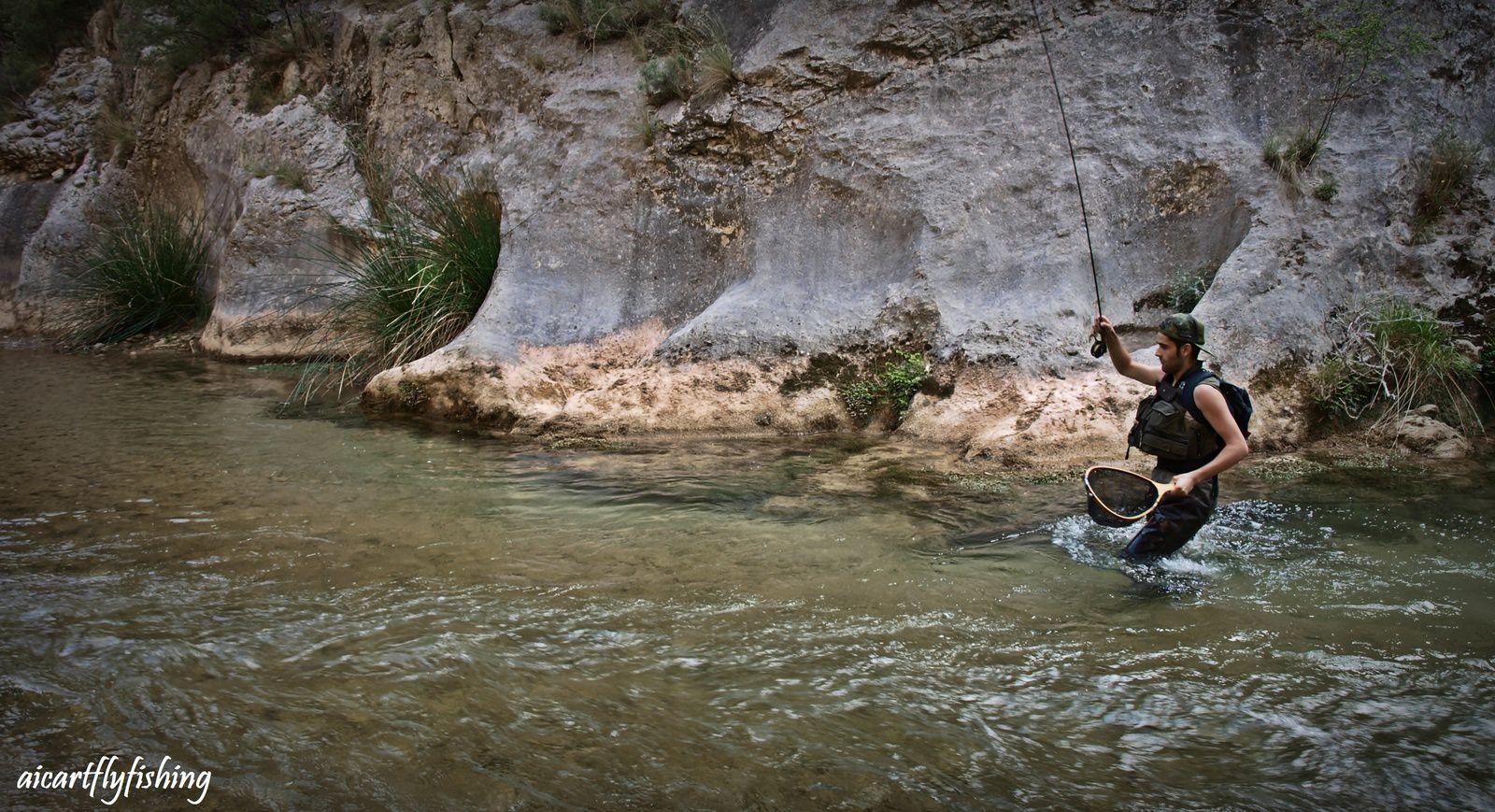 Trucha enloquecida que me hizo bajar un buen trozo río a bajo. - Crazy trout  make me run downstream.