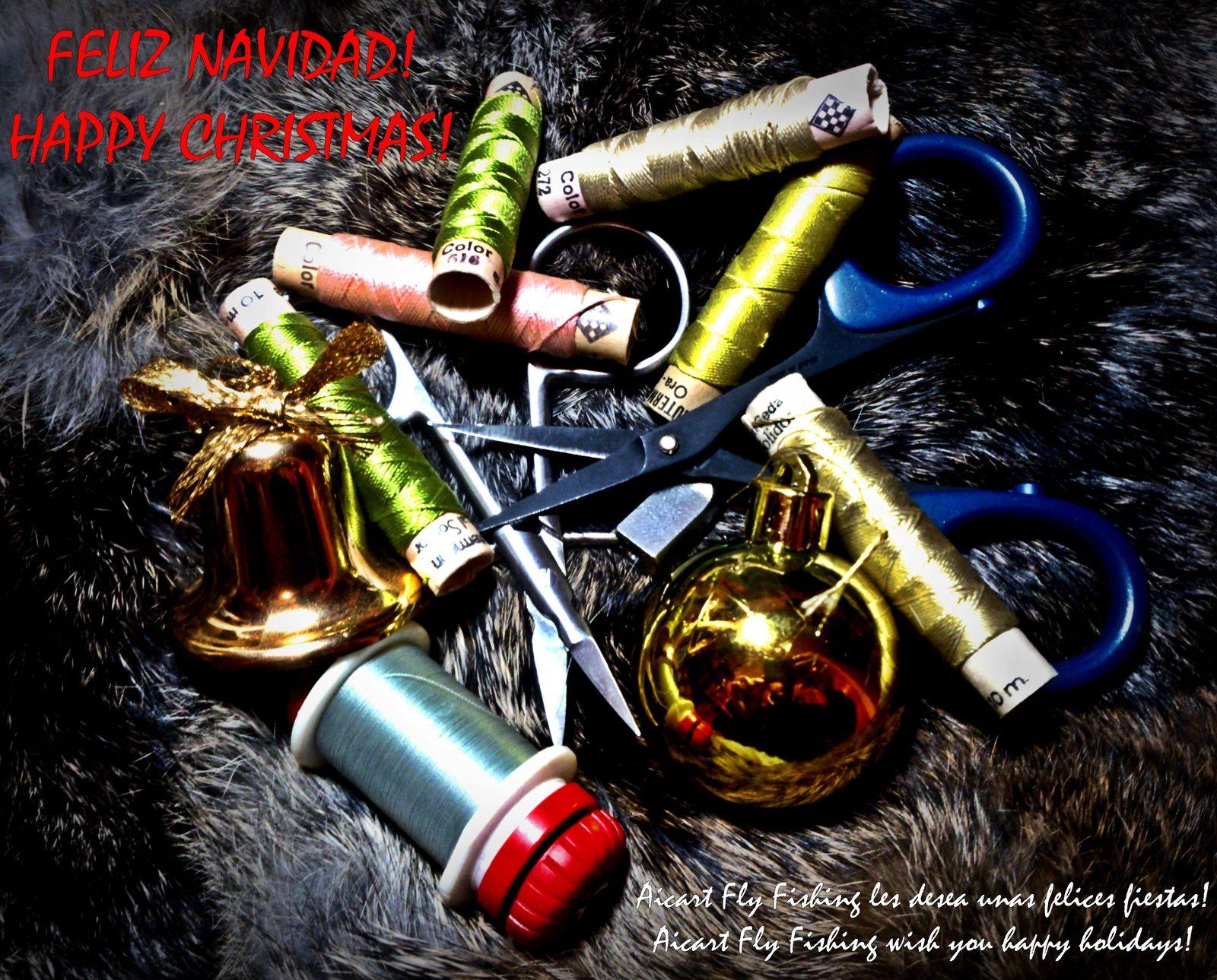 FELIZ NAVIDAD! - HAPPY CHRISTMAS!