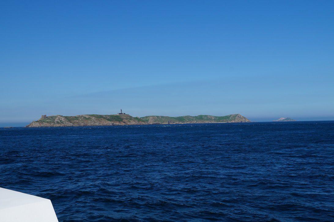 Les Sept Iles dans les Côtes d'Armor, refuge des oiseaux marins