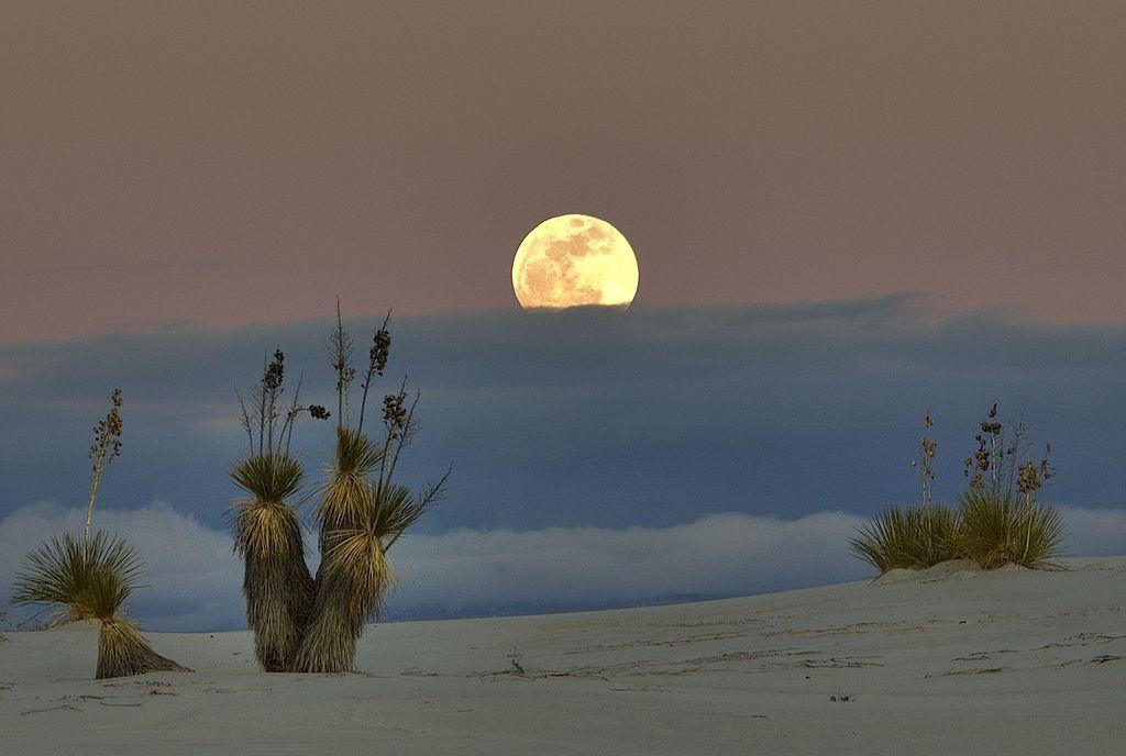 Par snowpeak — Peekaboo MoonUploaded by PDTillman, CC BY 2.0, https://commons.wikimedia.org/w/index.php?curid=9319962