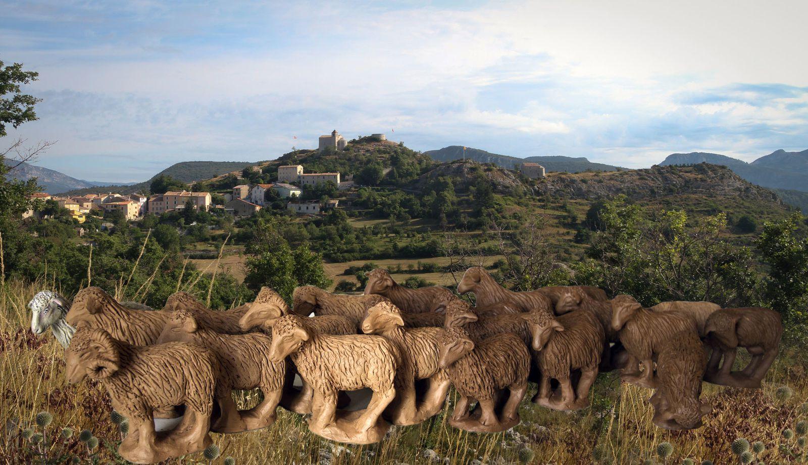 Le troupeau d'agrandit, 23 têtes