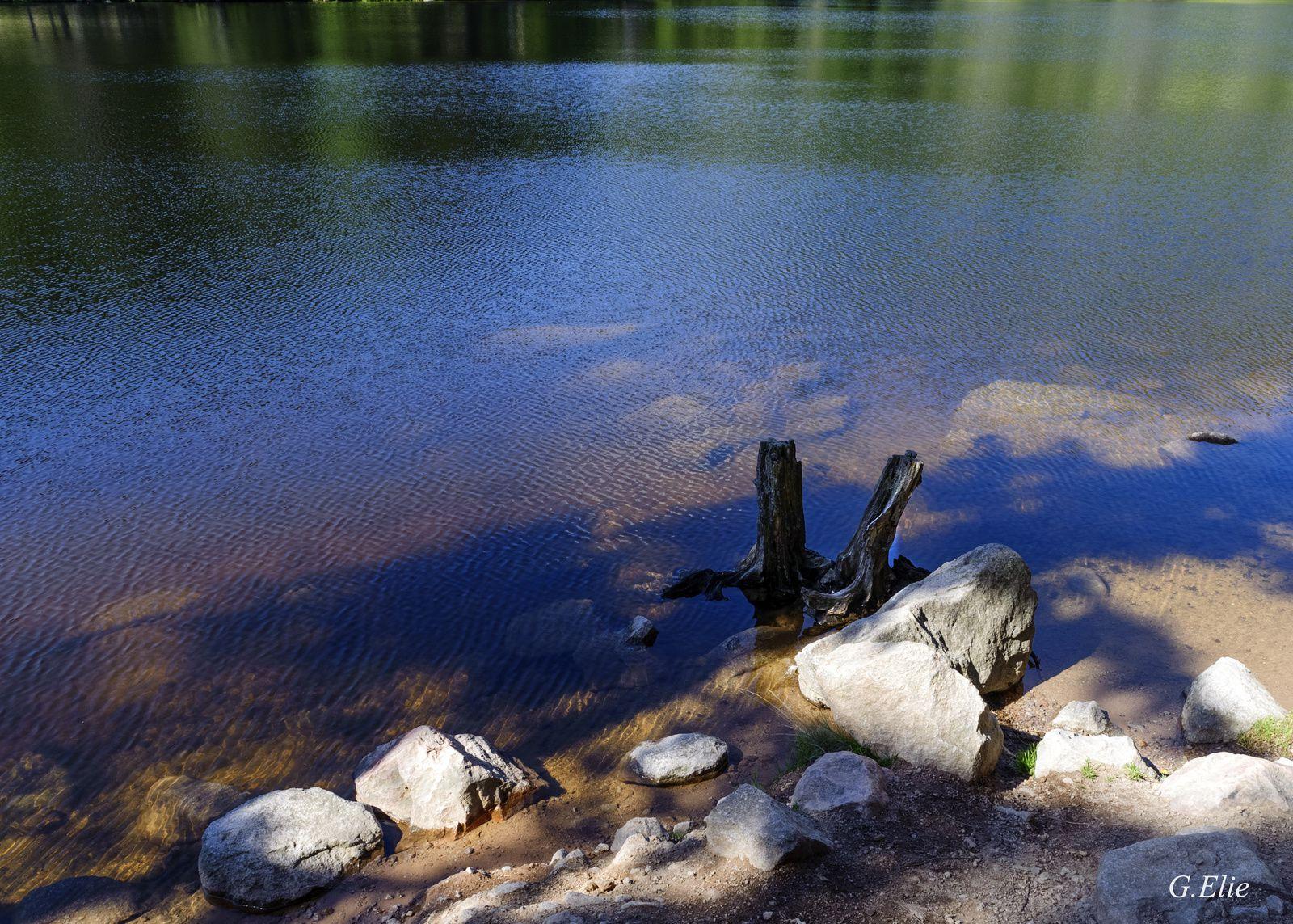 Lac du Forlet !