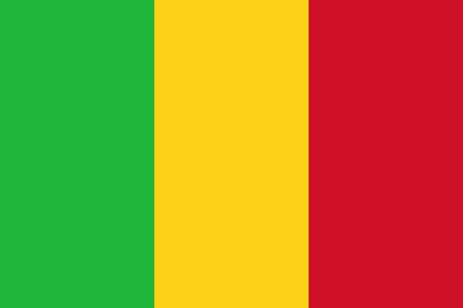 Rencontre avec Issa N'Diaye: La France en guerre au Mali, enjeux et zones d'ombres,