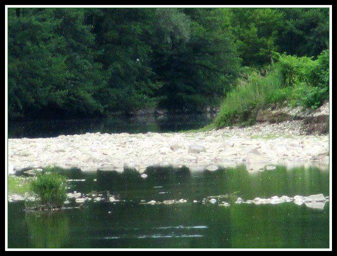 L'eau commence à sévèrement manquer dans le Doux à Tournon.
