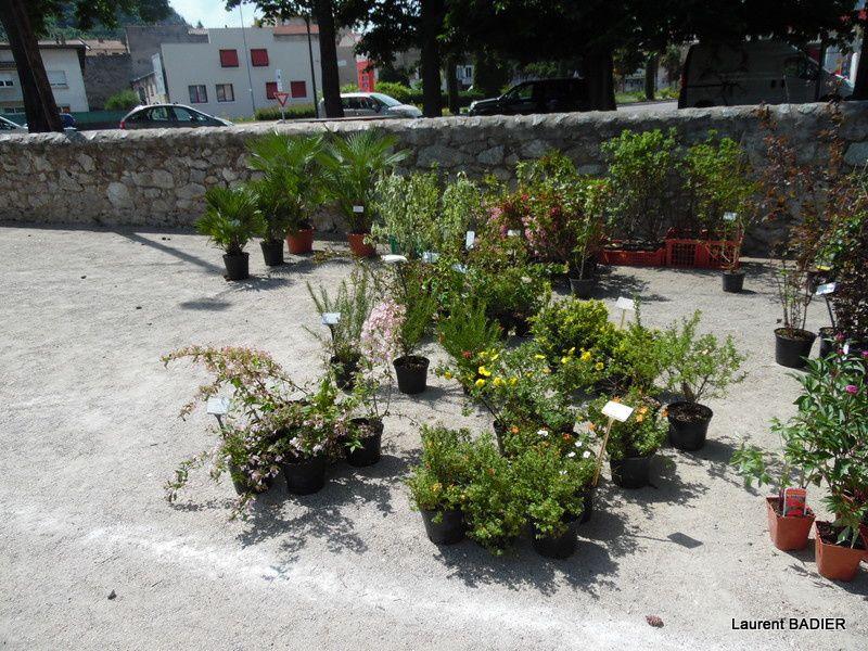 Foie aux plantes 2015 à Tain-l'Hermitage