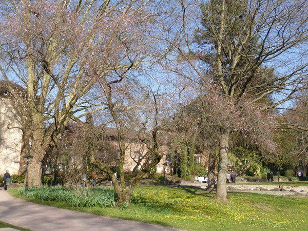 l'après-midi, au parc municipal...
