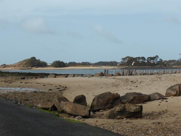 Rendez-vous à 17h15  (marée descendante)...à Carantec, plage de la Grève blanche...