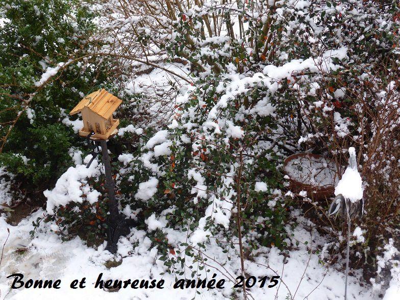 (vue depuis la véranda puis vue sur les petits arbustes devant la maison)