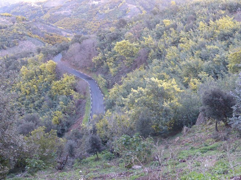 ..pour traverser le massif du Tanneron...