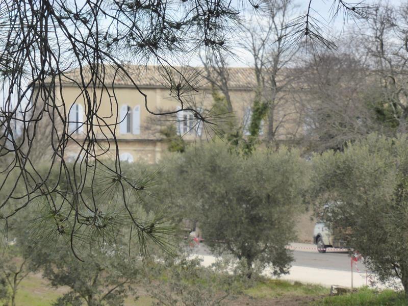 ...Hospice Saint Paul de Mausole...