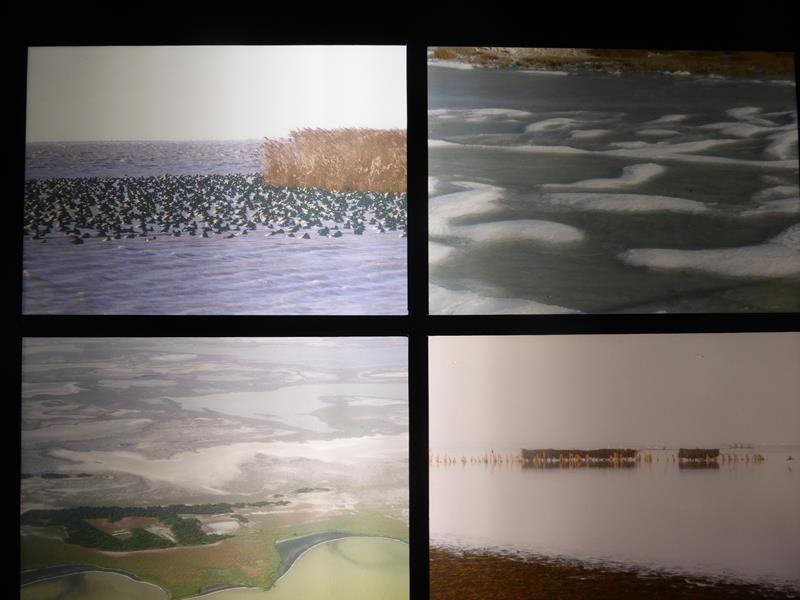 ...les étangs d'eau salée...