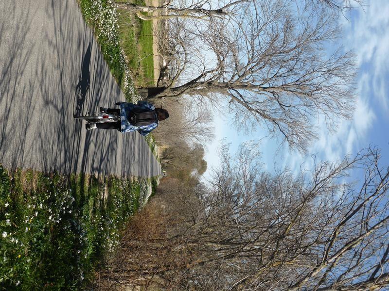 Vers la Maison de la Nature...c'est déjà le printemps !
