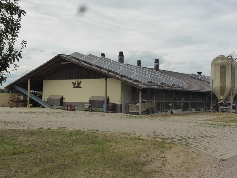 Un peu plus loin...une exploitation au toit couvert de panneaux solaires...ce qui est très fréquent en Allemagne...