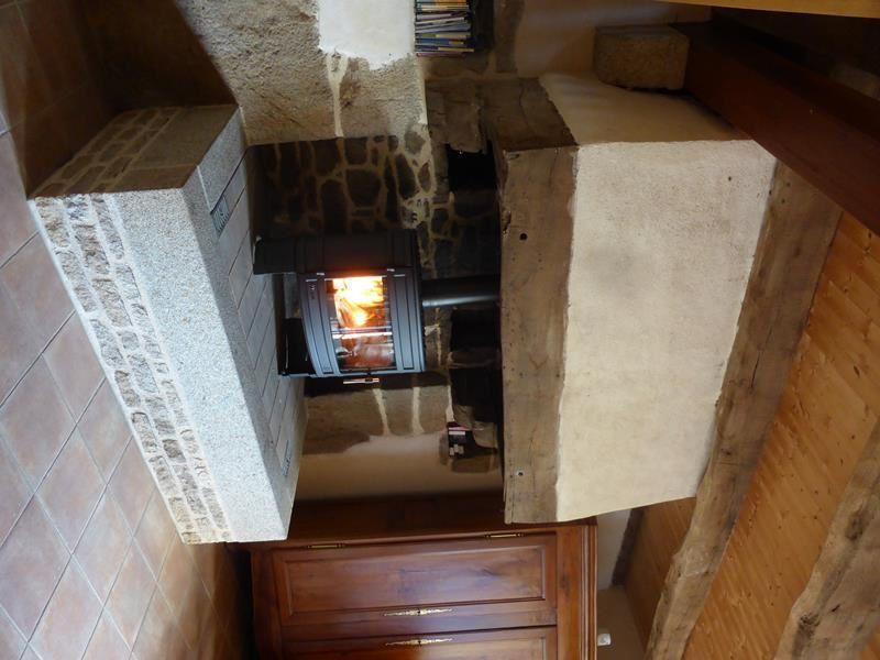 avec ce poêle à bois en fonte, nous aurons toujours le plaisir de voir la flambée en plus d'une agréable chaleur...