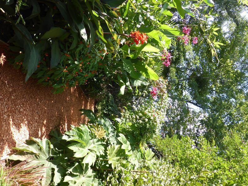 Jardins extraordinaires...fin