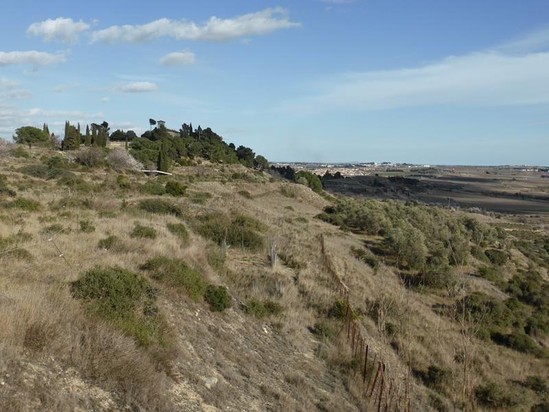 L'oppidum d'Enserune