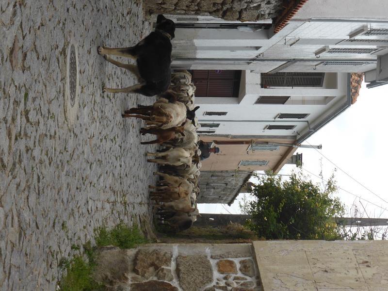 21 - Haut Douro...balade archéologique...