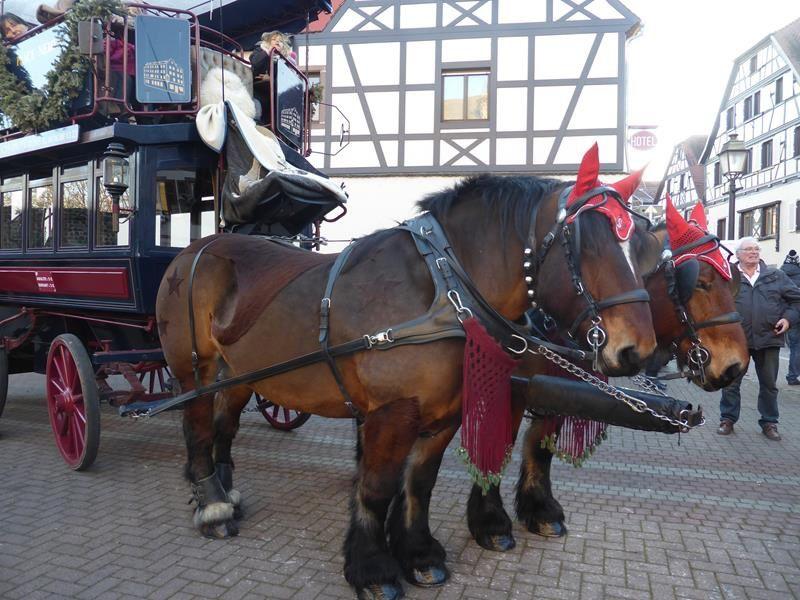 J 10 et marché de Noël d'Obernai