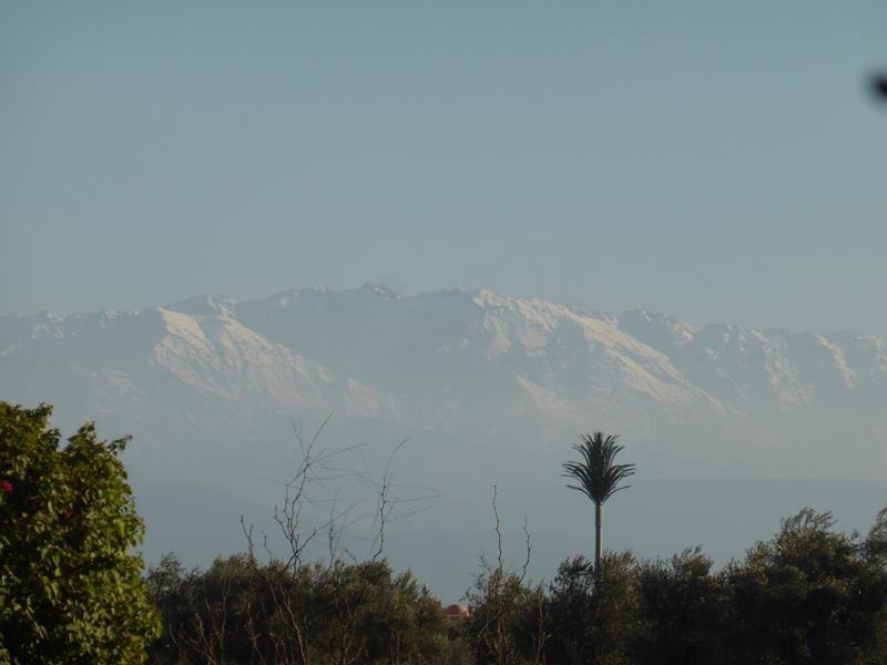 Marrakech...un dimanche tranquille...