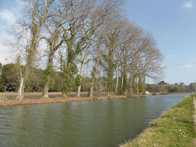 Balade au bord du canal du midi