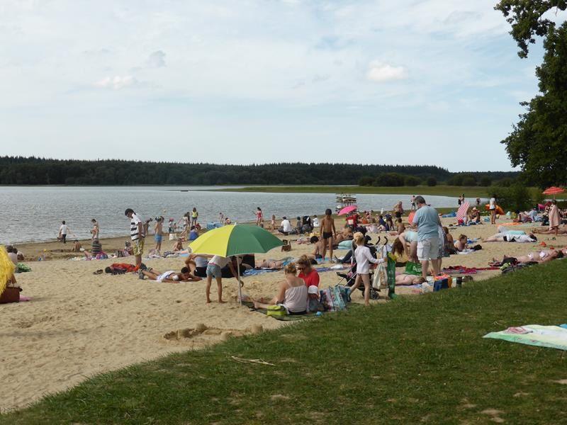 Août en Bretagne : vers l'étang de Boulet