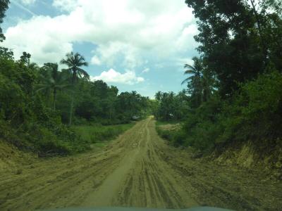A la découverte de Bohol. ..suite