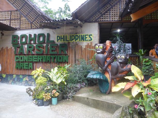 Bohol. ...tarsiers et Chocolate Hills. ...