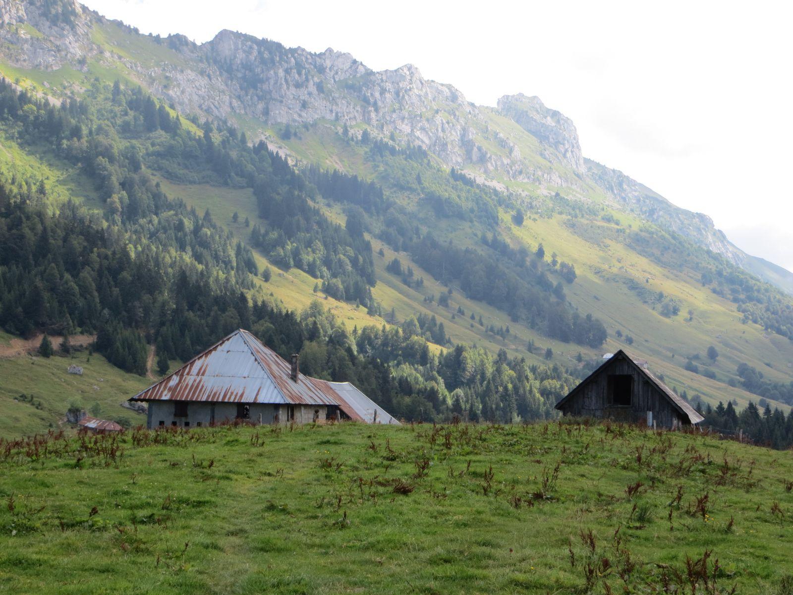 Randonnée Montagne - Crêt du Char (Bauges)