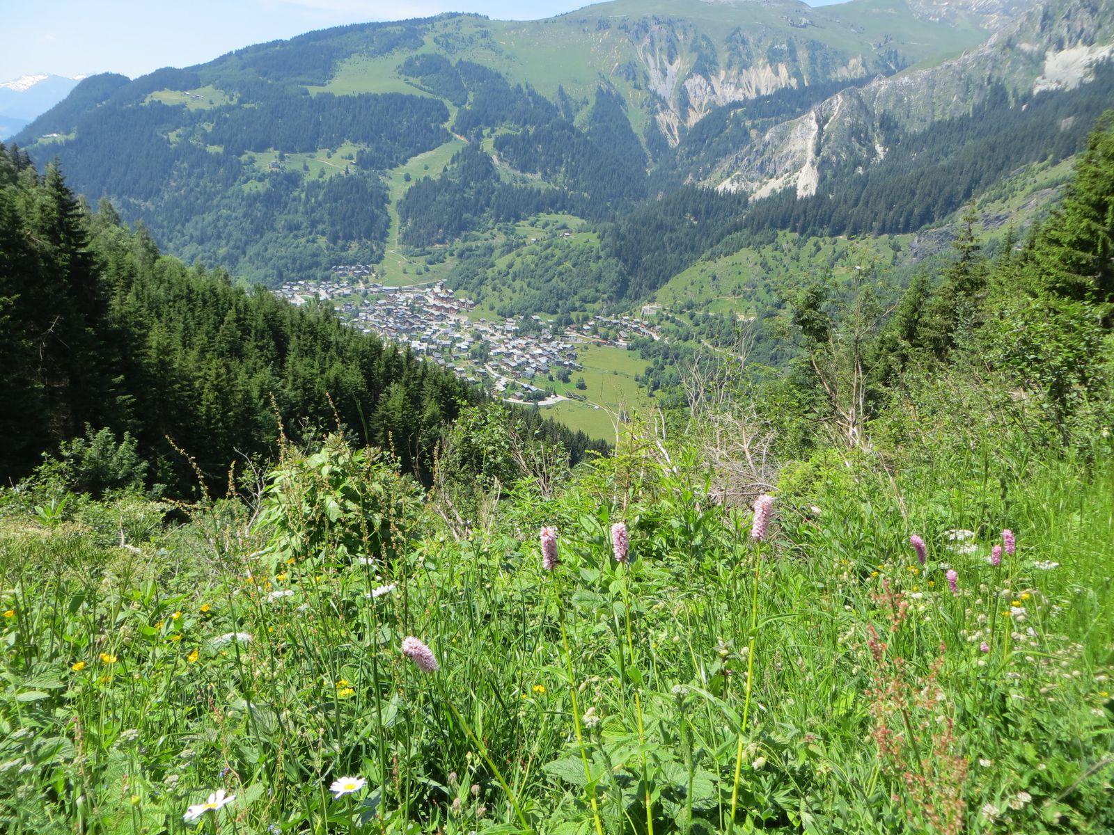 Randonnée Montagne - La Tour du Merle - 1973m - (Vanoise)