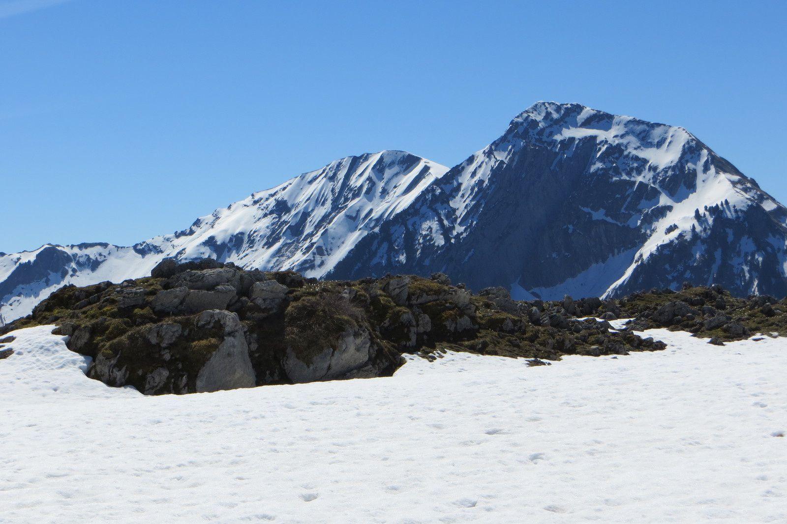 Mont d'Armenaz et Mont Pécloz vus du Plan de la Limace