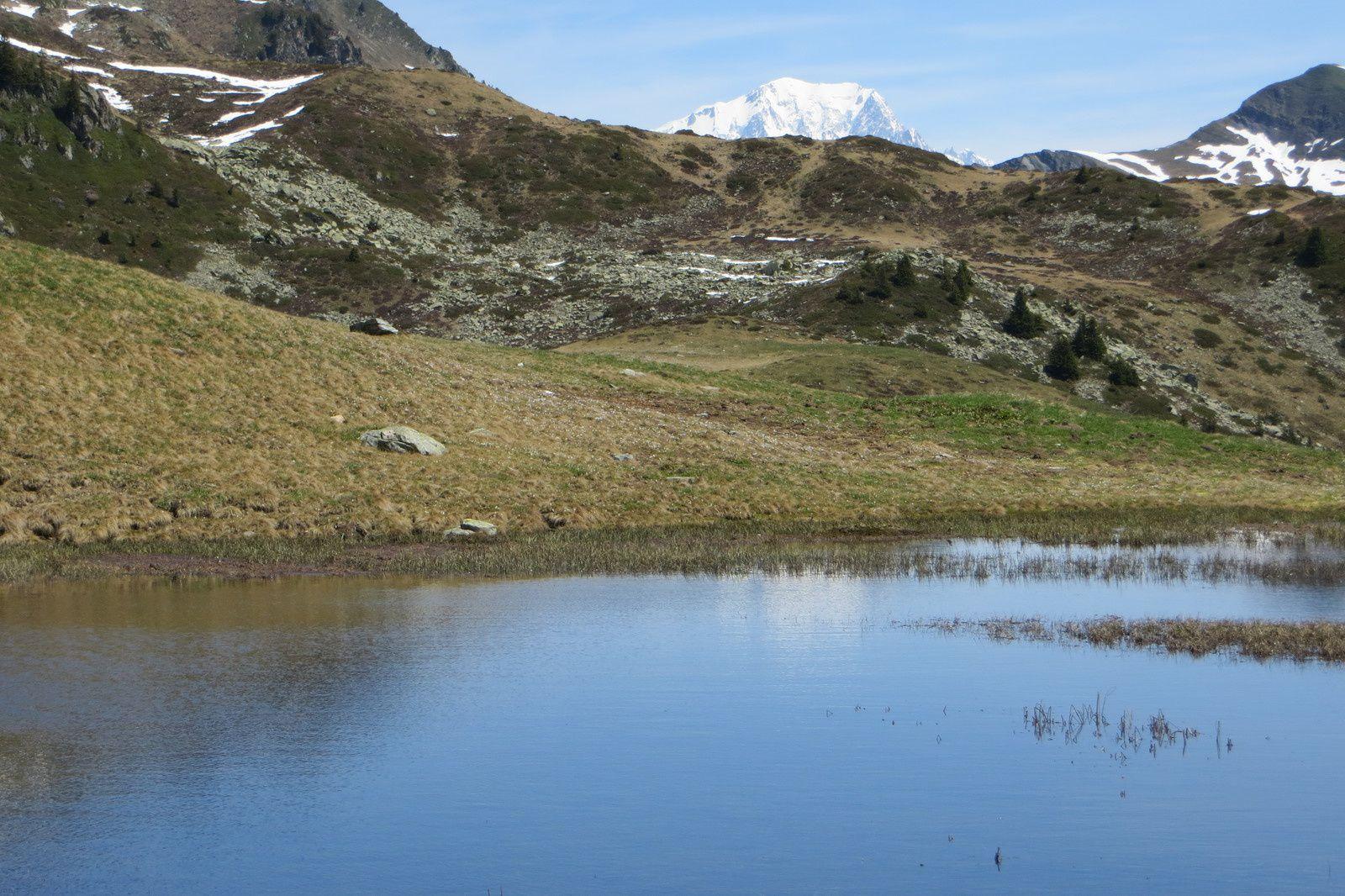 La gouille du Chalet de la Perrière, miroir du Mont Blanc