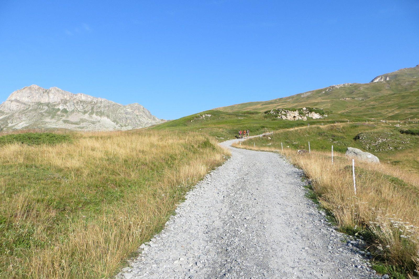 La piste pastorale au départ