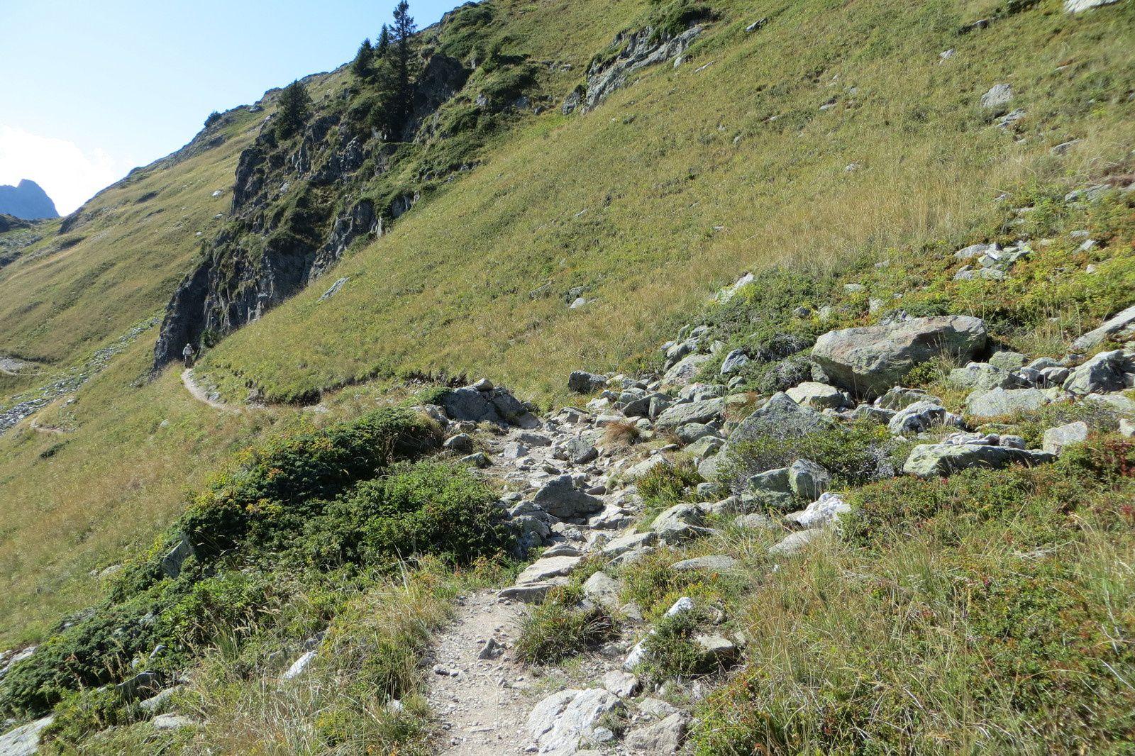 Le sentier de retour au Col de la Louze (vue arrière)