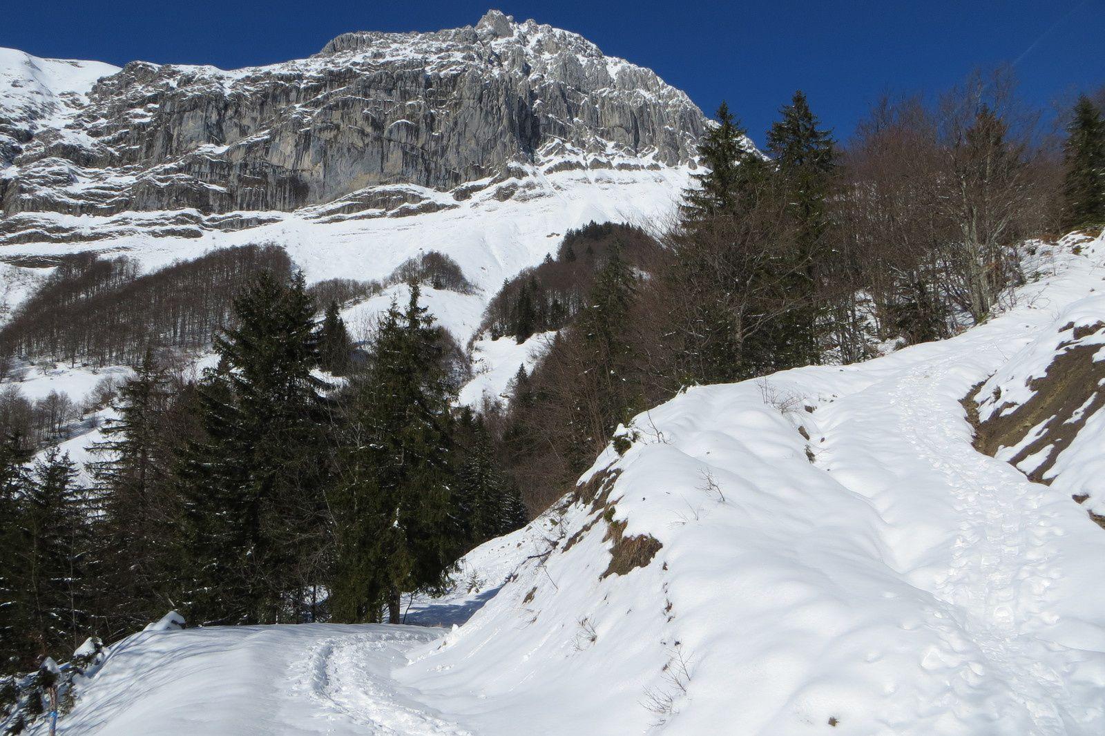 Face Est du Mont Trélod (2181m) vue de la jonction