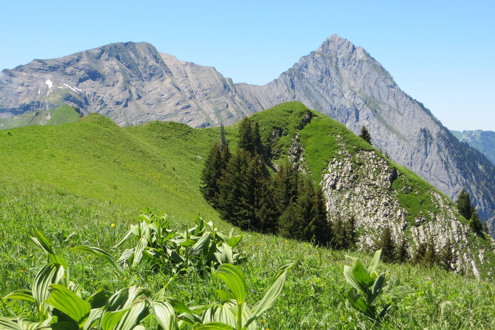 Crête du Gand Roc 1814m devant le Mont d'Armenaz et le Mont Pécloz