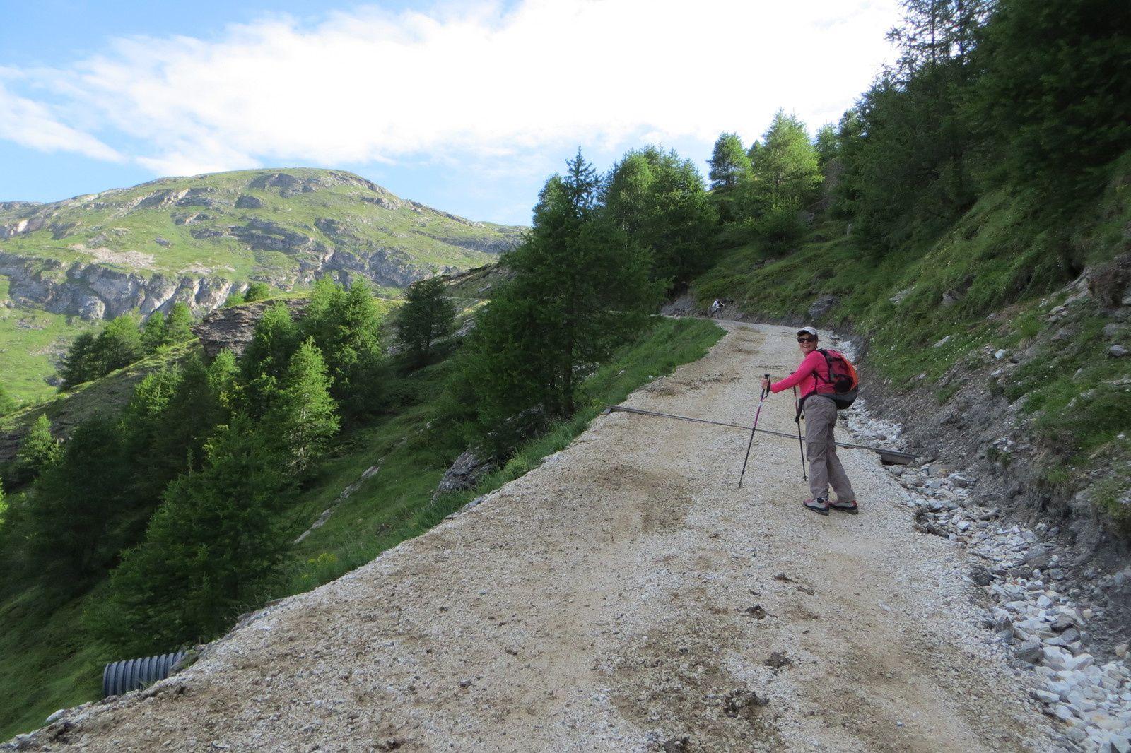 La piste pastorale vers le Vallon du Clou
