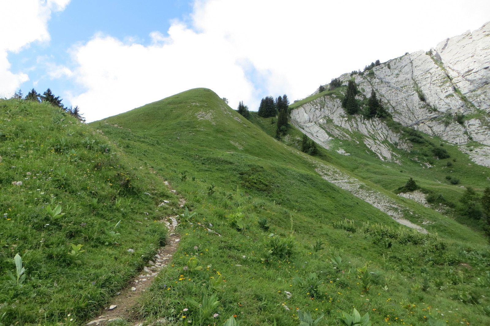 Le sentier de montée (suite)