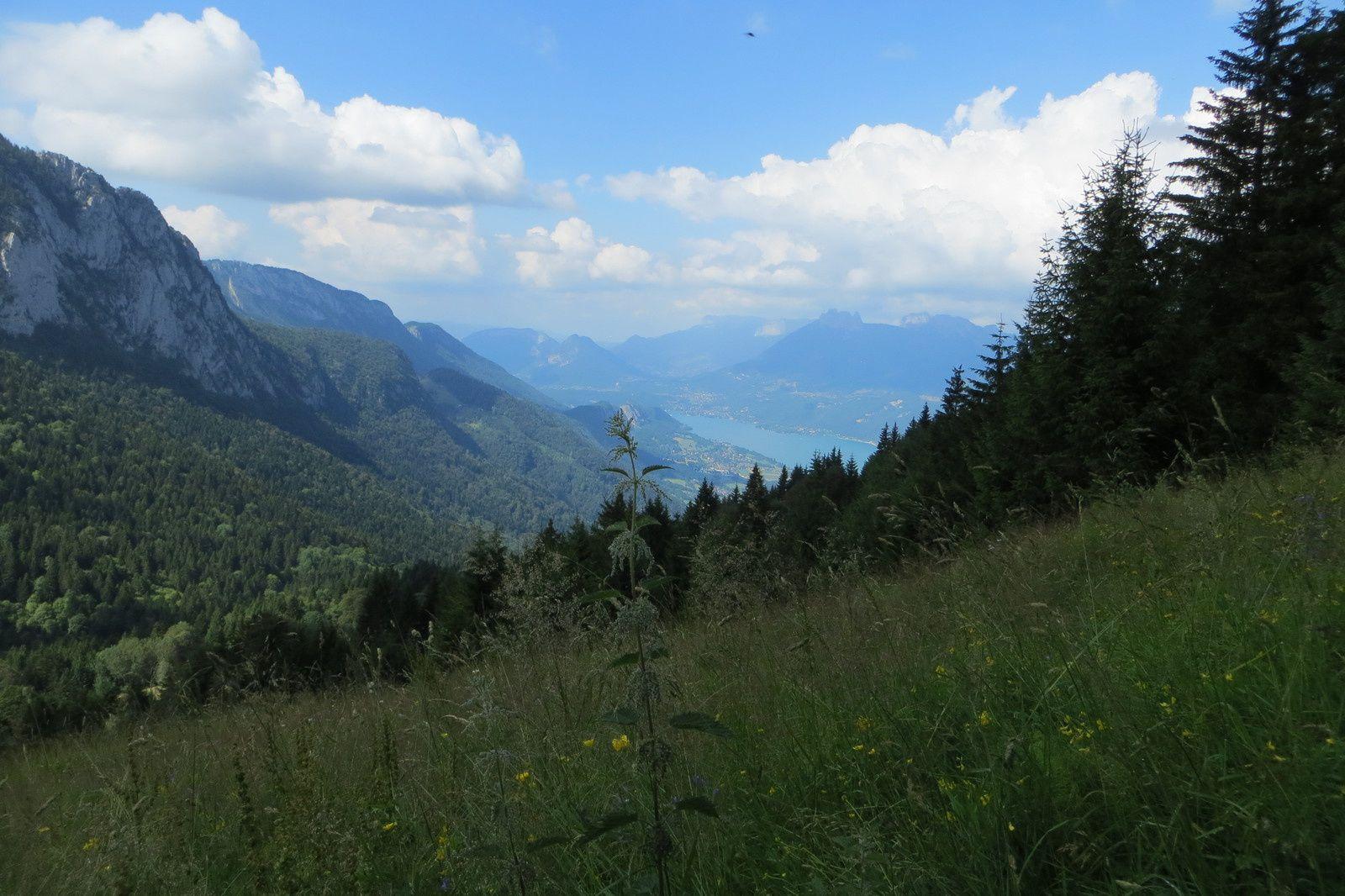 Le Lac d'Annecy vu de la prairie après les Chalets des Ailes du Nant