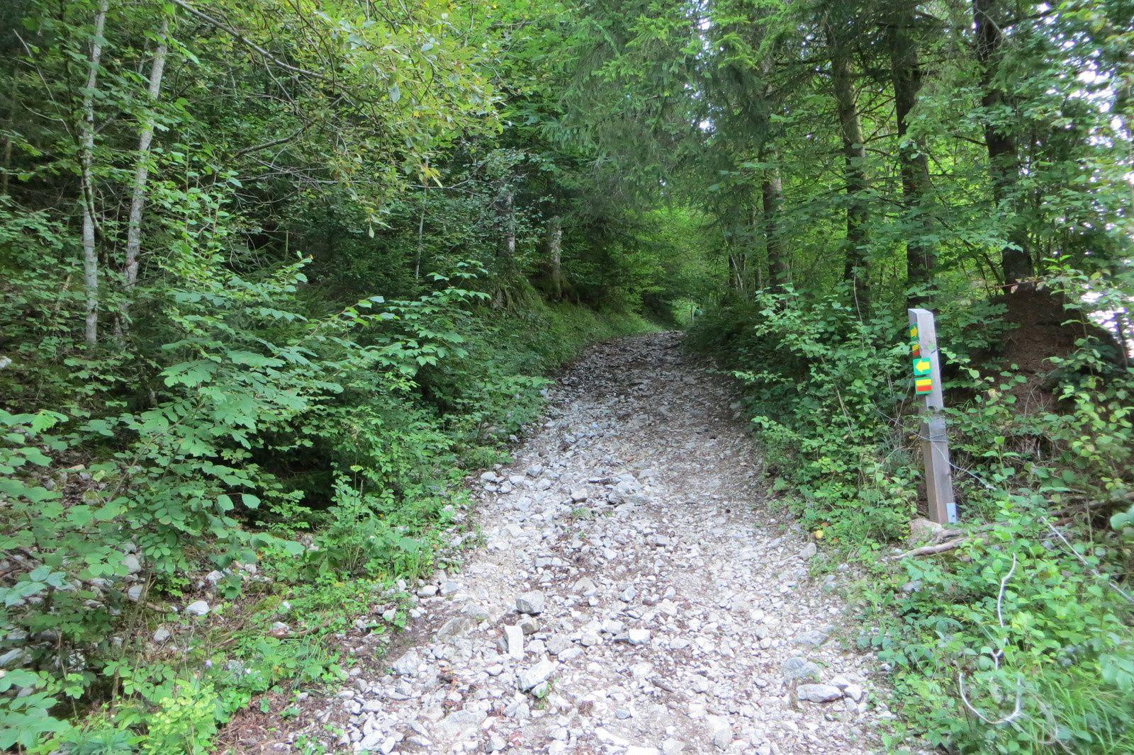 La piste pastorale au départ de Prampraz