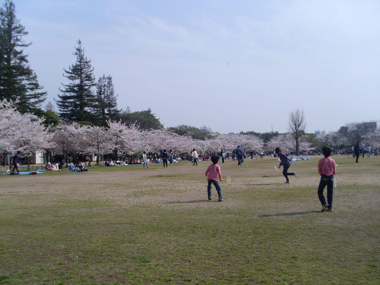 Quelques photos du Japon (6) : Himeji
