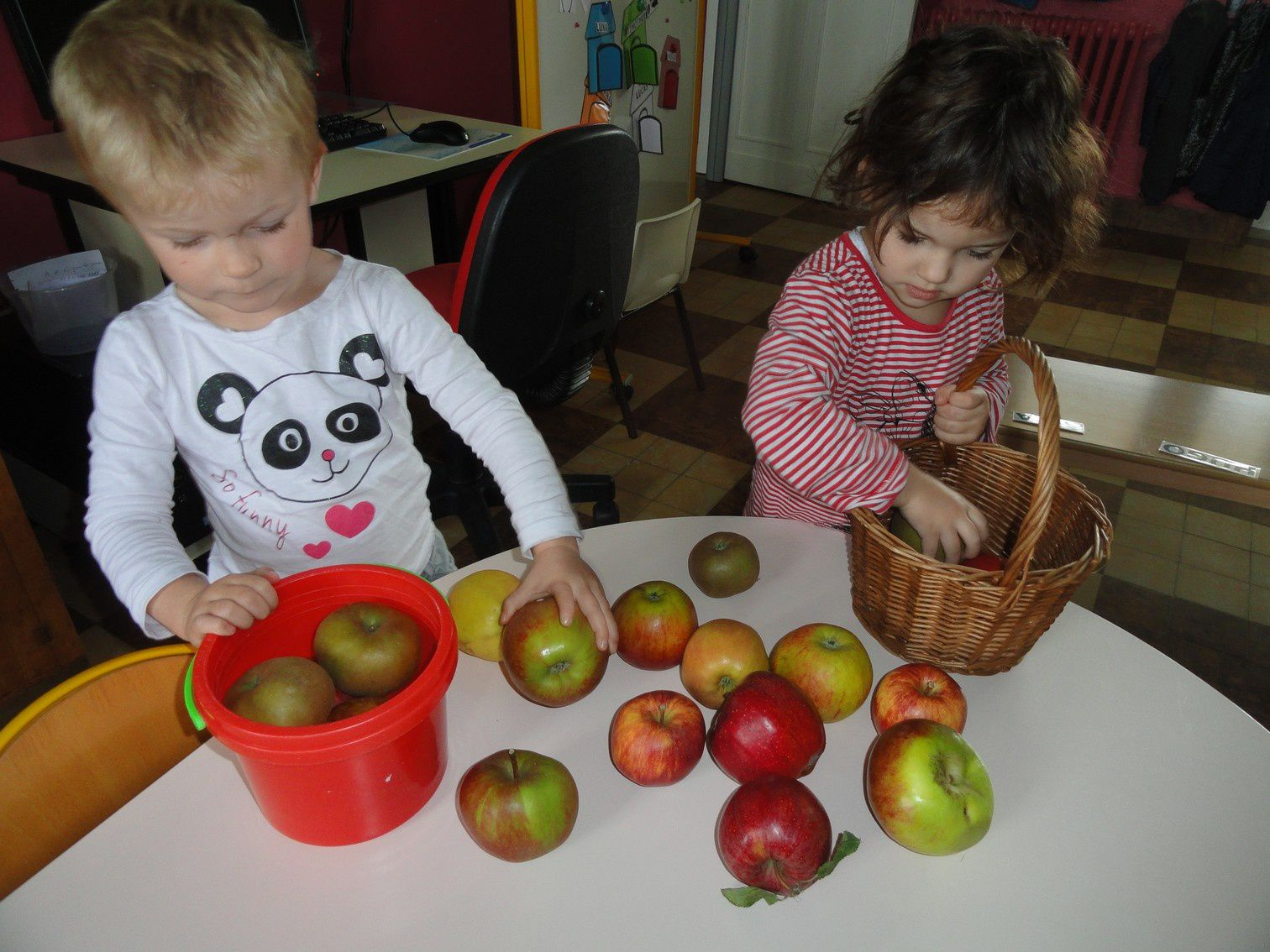 Les pommes : activités pédagogiques en PSM