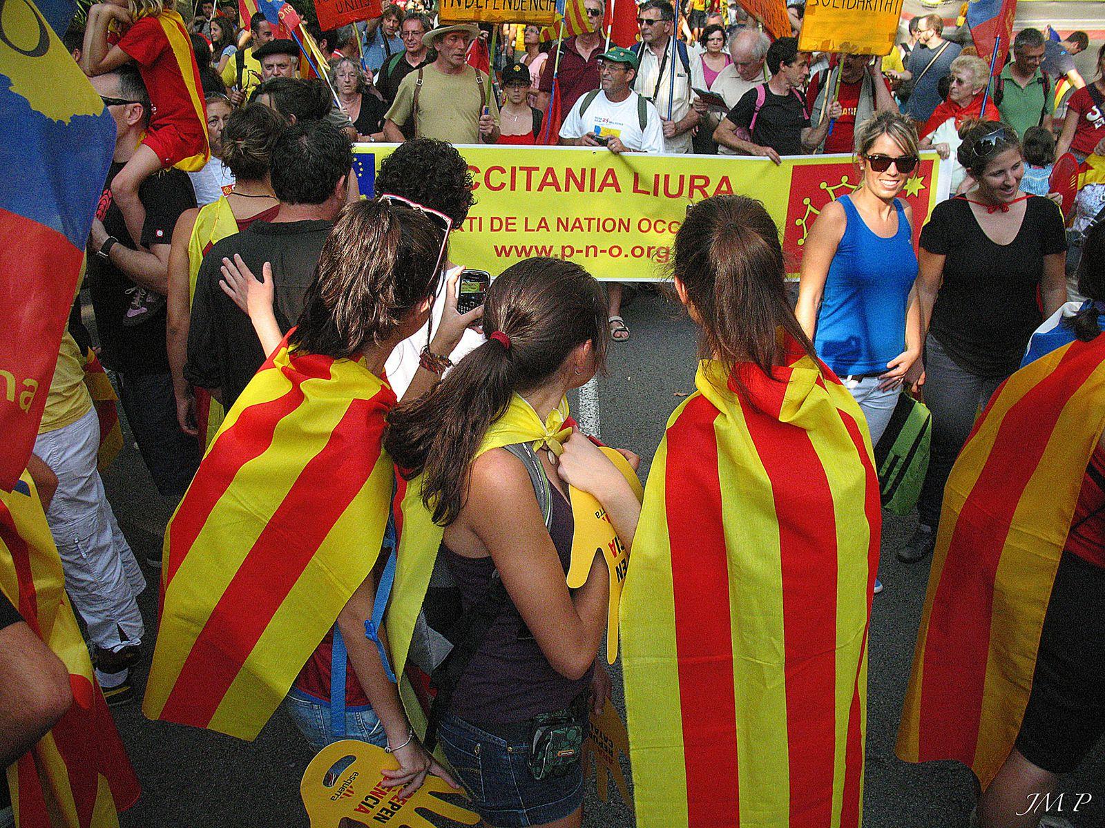 Partido de la Nación Occitana