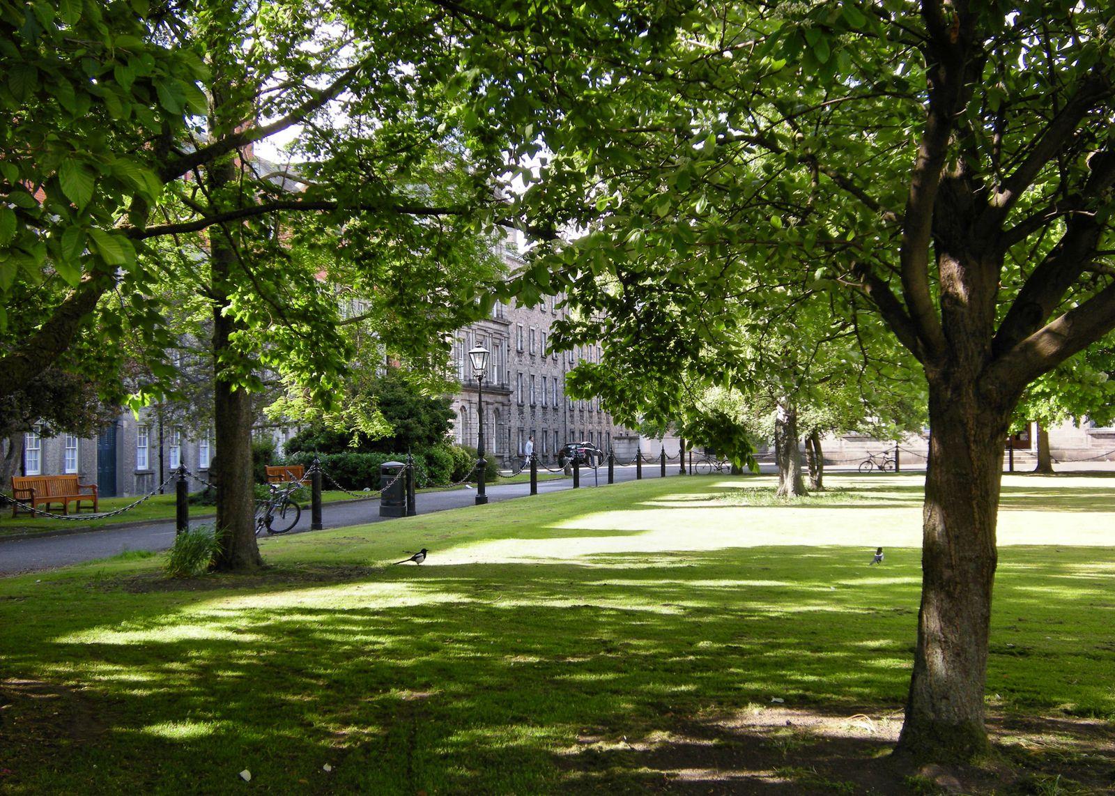 Dublin, ce que l'on a vu