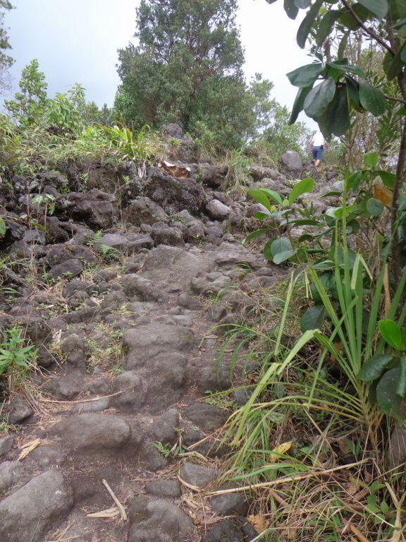 Costa Rica - Jour 6 : Arenal - Le Parc national et Baldi