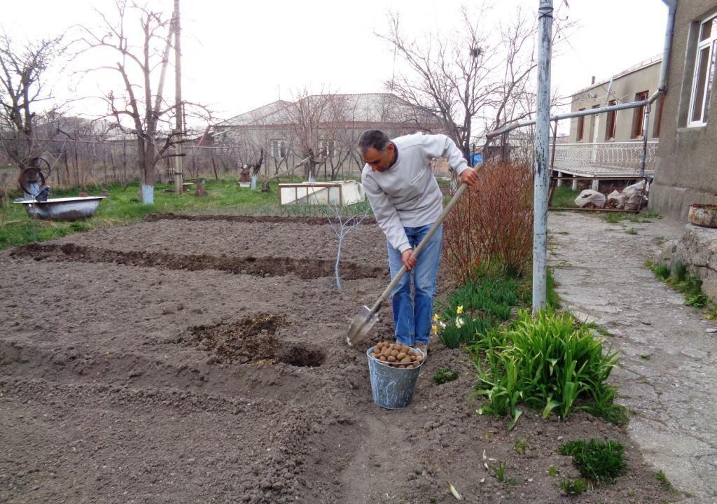 Pause pour regarder Artem trimer dans le jardin
